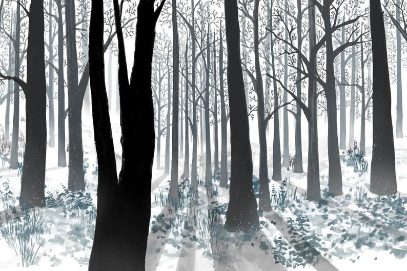 Seasons winter image 0