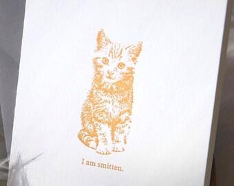 Smitten Kitten Valentine/'s Day card
