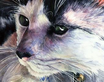 Afternoon Sun Giclee Print - Realistic Watercolor Cat, Pet Portrait, Cat Painting, Cat Portrait, Realistic Painting, House Cat, Cat Lovers