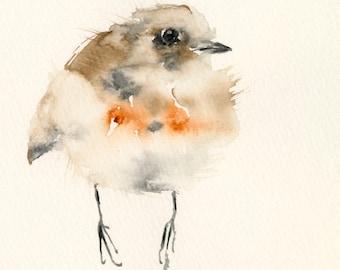 Fine Art Print from my Original Bird Watercolor Red Robin