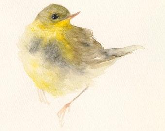 Fine Art print from Original Bird Watercolor Yellow Bird
