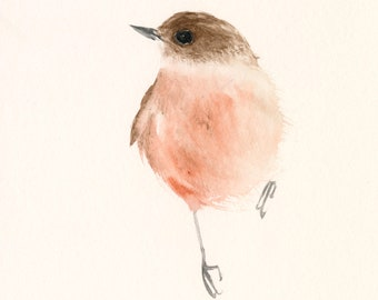 Fine Art print from Original Watercolor Painting Pink and Brown Bird