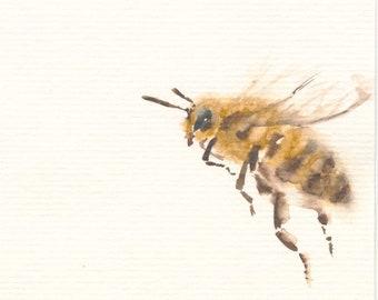 Bee Fine Art Print from Original Watercolor