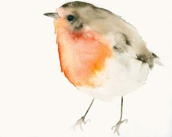 Robin Bird Art Print from Original Watercolor