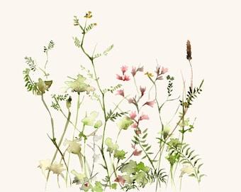 Wild Flower Meadow Fine Art Print from Original Watercolor