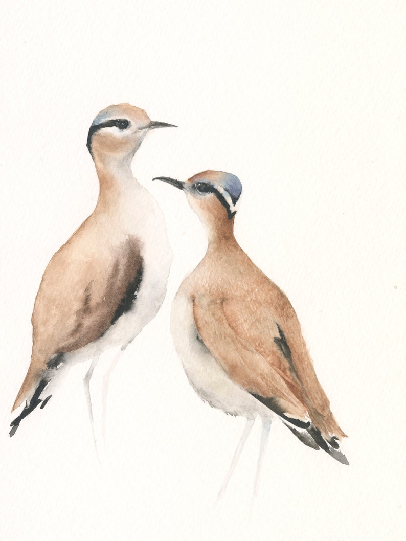 Art Print from Original Watercolor Artwork Two Cream-colored Coursers