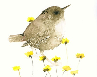 Bird Art Print from Original Watercolor Wren