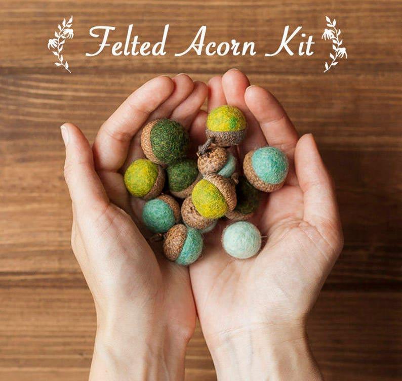 Craft Kit Felted Acorn Kit Beginner Felting Kit Fall Etsy