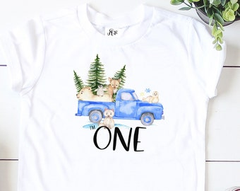 Blue Truck Birthday Shirt, Boys One Birthday, Custom Blue Truck, Winter Onederland Birthday Shirt, I'm One, Birthday Baseball Shirt