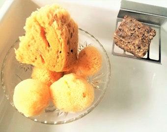 Sea Sponge | Facial Sponge | Bath Sponge | Skin Care Sponge