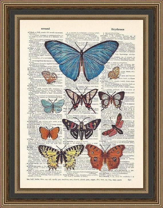 VINTAGE BUTTERFLY PRINT Nature Art Print Butterfly Art Antique Nature Print