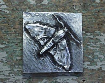 plaque/tiles