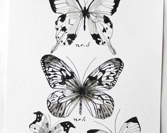 SALE Butterfly Art- Lepidoptera Study Original Watercolor Painting by Sarah Storm