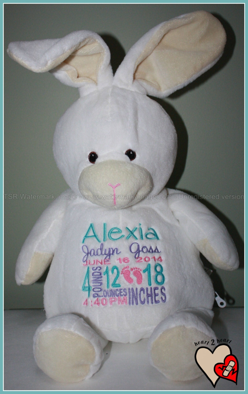 Birth Stat Pets Personalized Bunny Stuffed Animal