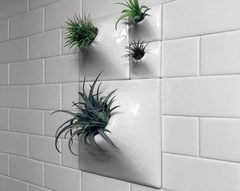 Ceramic Wall Planter Set of 4 - Handmade USA - Indoor - Outdoor - Greenwall Vertical Garden Living Wall Art Succulent Airplant Orchid Holder