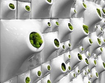 Modern Ceramic Wall Planter Greenwall - Handmade USA - Indoor - Outdoor -Vertical Garden Moss Wall Art- Office Decor Home Decor Green Living