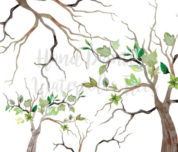 Watercolor Tree Clip Art High Resolution Graphic Greeting Etsy