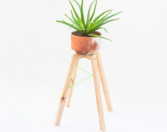 Modern wooden indoor plant stand, simple home garden planter legs, decor with plants accessories