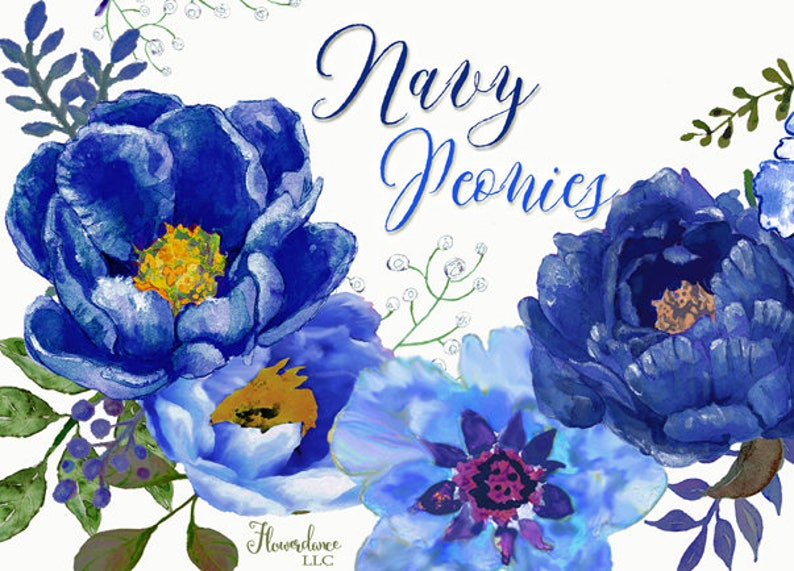 e289101c5875 Navy peony clipart sapphire watercolor midnight blue floral
