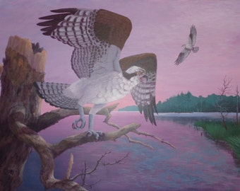Original acrylic painting,  Osprey, fish hawk, bird of prey, 18x24, Don Reardon