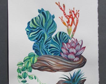 """Succulents/ Driftwood/ Watercolor ORIGINAL Painting 11""""x14""""/ Succulent Wall Art/ Gift for Mom/ Gift for Friend/ Gift ideas"""
