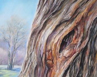 "ORIGINAL Pastel Landscape Drawing/ Sketch/ Old tree/ Spring Wall Art/ 12""x16"""