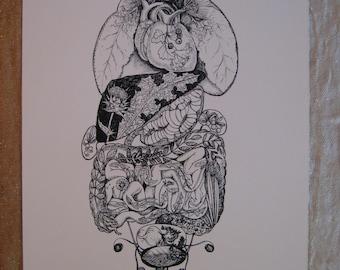Silk Screen Print: Herbal Anatomy--Fine Art Print Ready to Frame