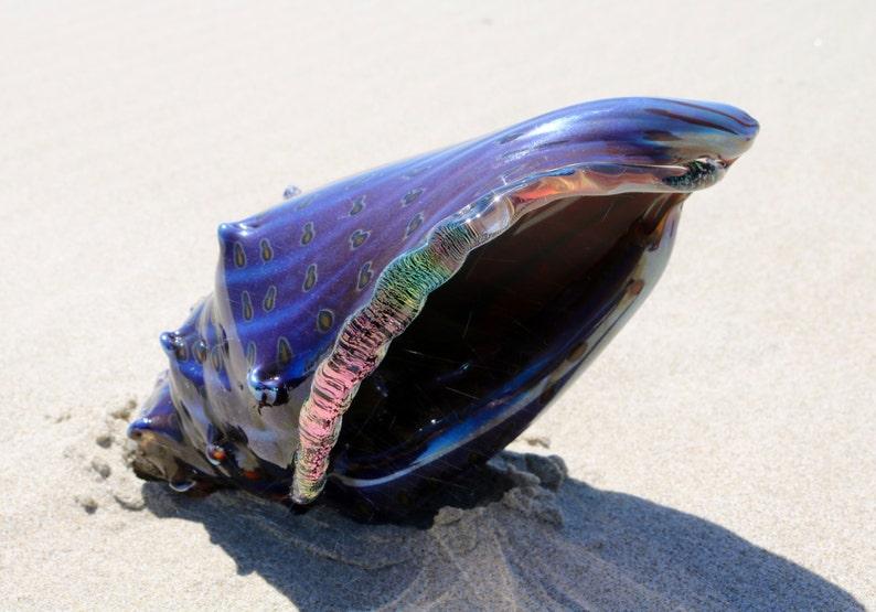 7f5b003ecb8a Magical sea shell hand blown glass