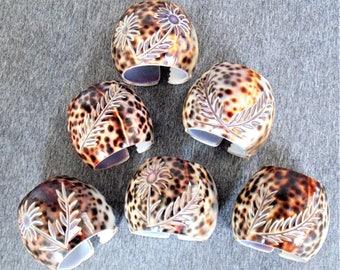 Lot de 6 sculpté Tiger Courie Shell ronds de serviette