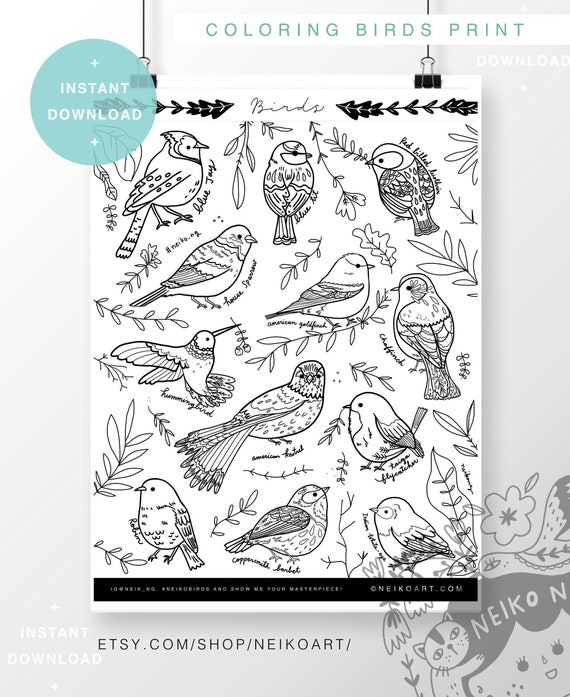 Coloring poster INSTANT DOWNLOAD bird poster coloring bird