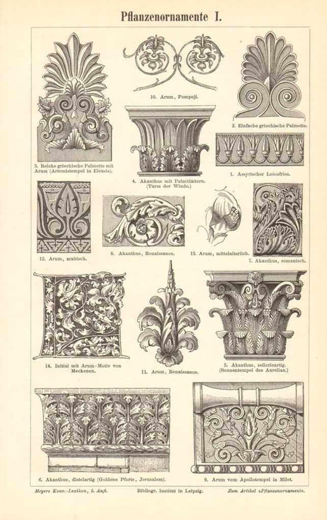 1897 Pflanze Ornamente Original antiken Gravur auf Rahmen | Etsy