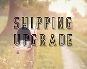 Shipping Upgrade to either USPS Priority Mail or USPS Priority Express