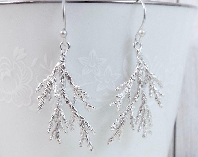 Silver Coniferous Cedar Tree Evergreen Needle Sprig Earrings