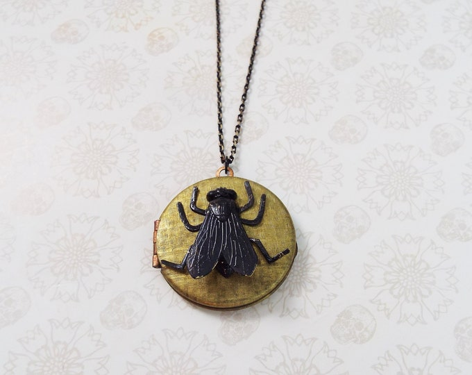 Black Fly Raw Brass Locket Pendant Long Necklace - Jewelry by Split Personality Designs