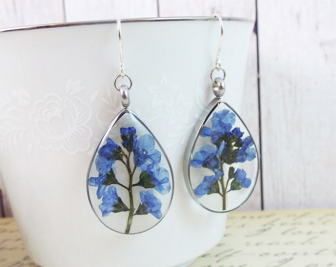 Forget Me Not Real Pressed Flower Blue Earrings Bridal Teardrop Floral Dangle - Remembrance - Bridesmaids Gift Nature Garden