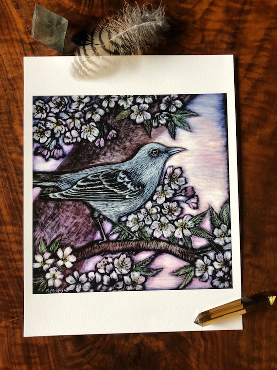 Mockingbird Archival Print Mockingbird art-Mockingbird ink painting-blossoms ink painting-mockingbird print-cherry blossoms printart