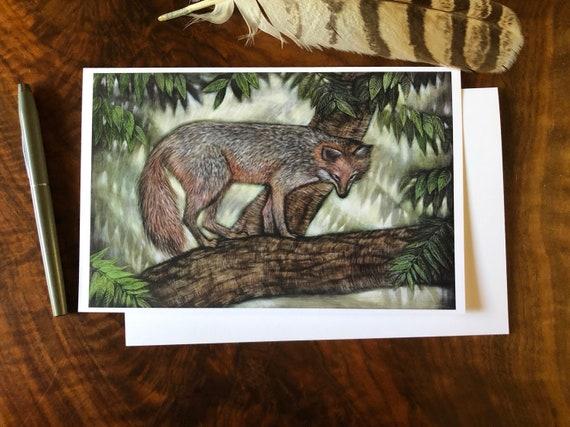 Fox|Gray Fox and Black Walnut Greeting Card|illustrated fox|fox art|fox card|fox greeting card|gray fox illustration