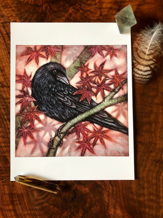 Crow and Japanese Maple Archival Print Crow art-crow ink painting-japanese maple ink painting-crow print-japanese maple art