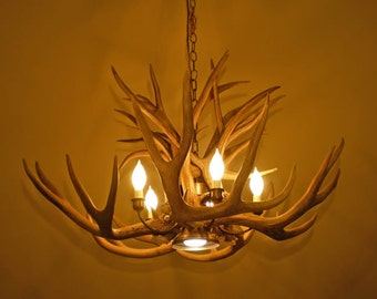 Real Antler Chandelier with downlight