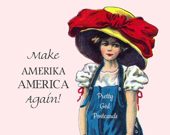 Funniest Pretty Girl Postcard Yet! MAKE AMERIKA AMERICA Again! Witty Quote Postcard Card For All Your Progressive Friends! Make 'em laugh!