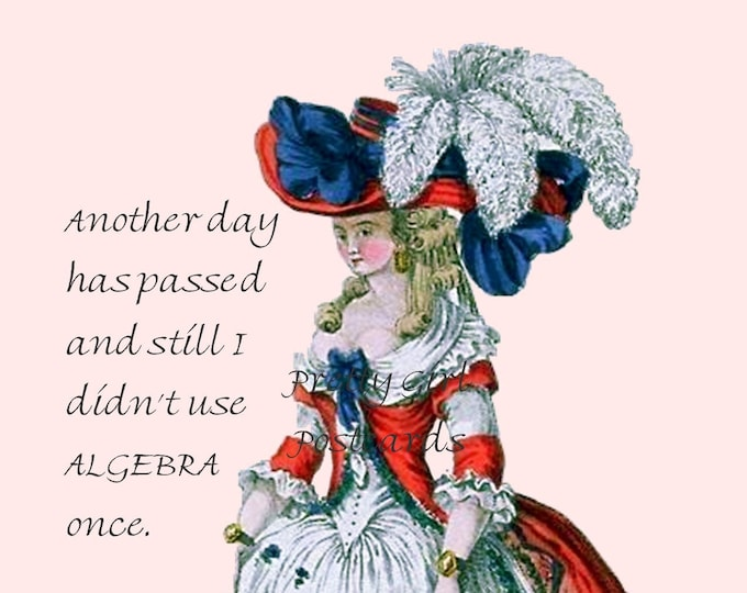"""FUNNY ALGEBRA POSTCARD, """"Another Day Has Passed and Still I Didn't Use Algebra Once."""""""