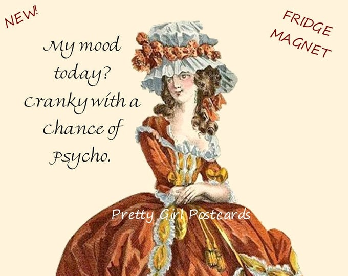 """New! """"MY MOOD TODAY?"""" Funny Fridge Magnet! """"My Mood Today? Cranky With A Chance Of Psycho."""" Buy 3 Magnets Get 1 Free."""