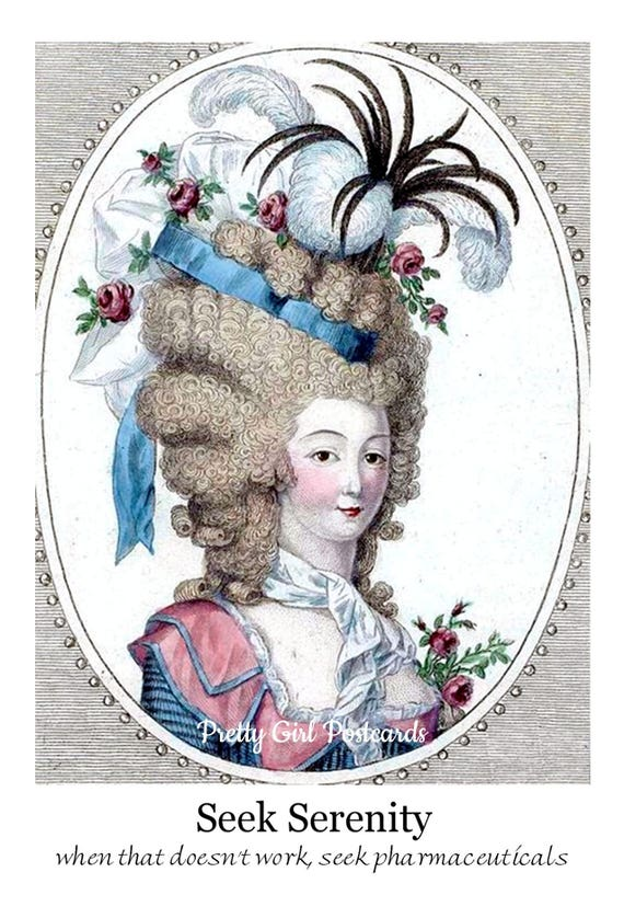 Seek Serenity - When That Doesn't Work, Seek Pharmaceuticals. Pretty Girl Postcard. Funny Card. Marie Antoinette Gift for Her. Funny Quote.