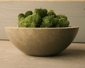 Small . Concrete .  Moss . Bowl