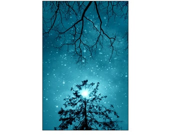 nature photography, trees, stars,peaceful, serene, turquoise, blue,teal, kid's wall art, nursery idea, children decor, happy 8x10