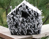 Snow and Ice House