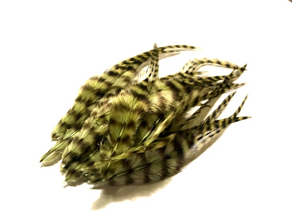 1 Dozen MEDIUM OLIVE Grizzly Rooster Feathers