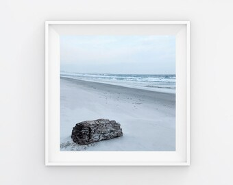 Driftwood Seascape Beach Tasmania Photography Print