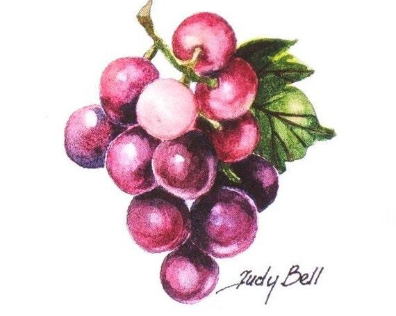 Purple Grapes Fruit Art Print Watercolor Painting Etsy