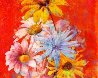 Red Star Series: Giclee Fine Art Print (2 Prints)